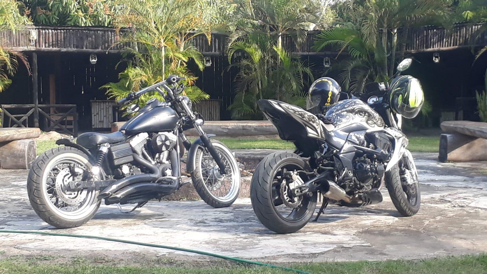 Harley Davidson Dyno Street Bob