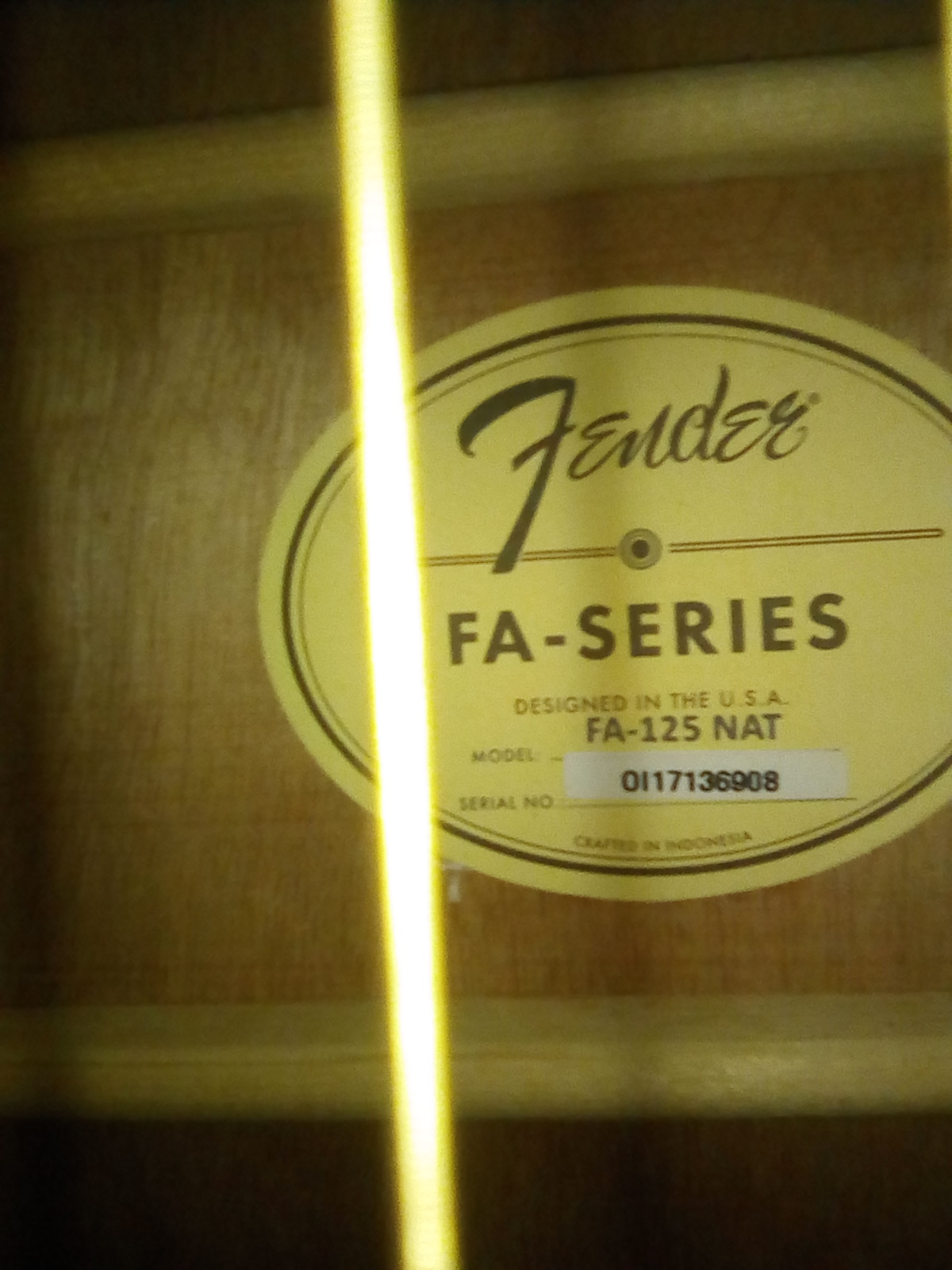 Fender FA-125 Guitar