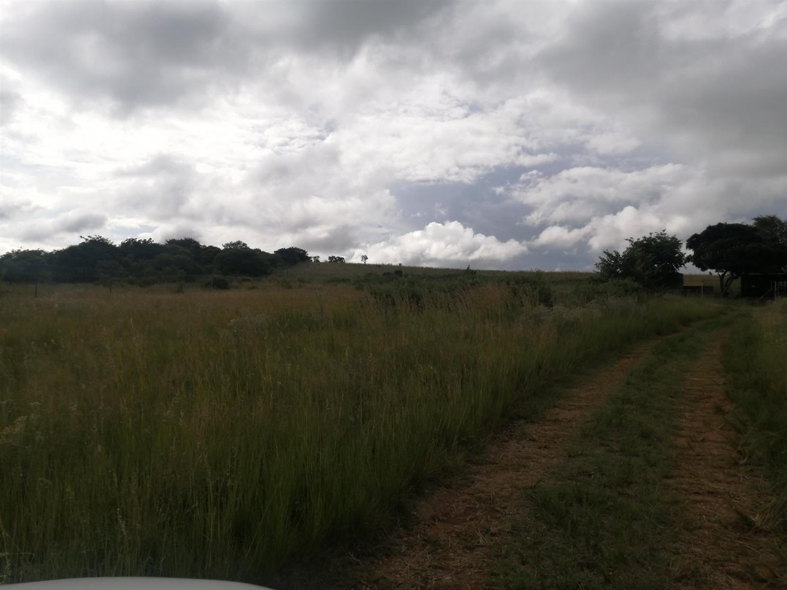 Vacant Land Residential For Sale in Kameeldrift