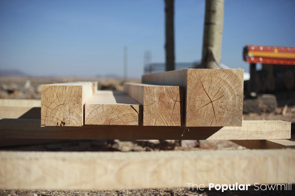 POPLAR, BLUEGUM, PINE TIMBER DIRECT FROM THE SAWMILL