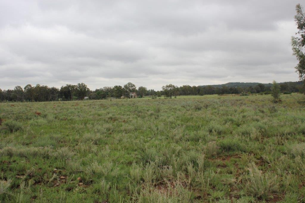 Vacant Land Agricultural For Sale in Valley Settlements AH