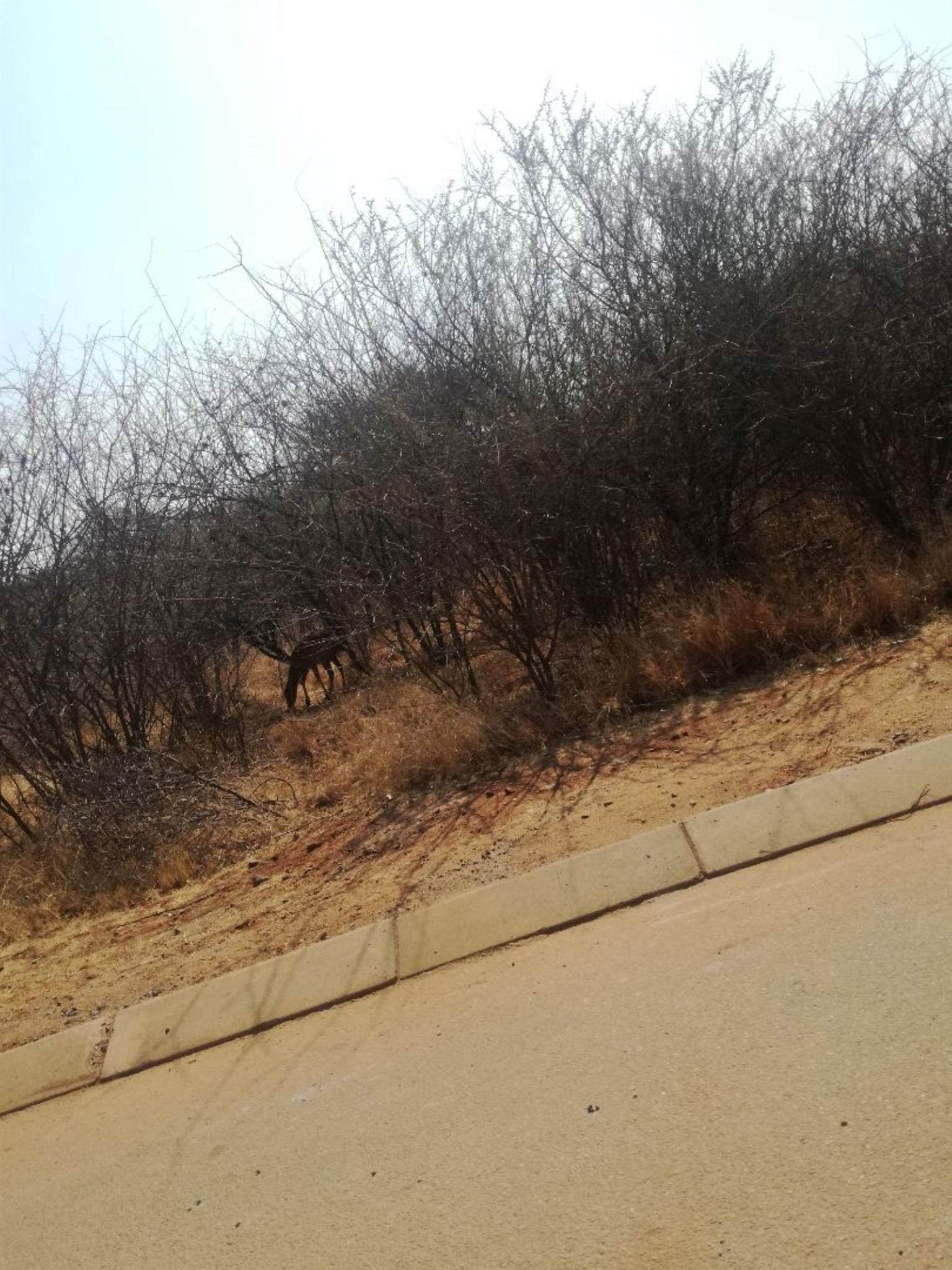 Vacant Land Residential For Sale in HARTBEESPOORT
