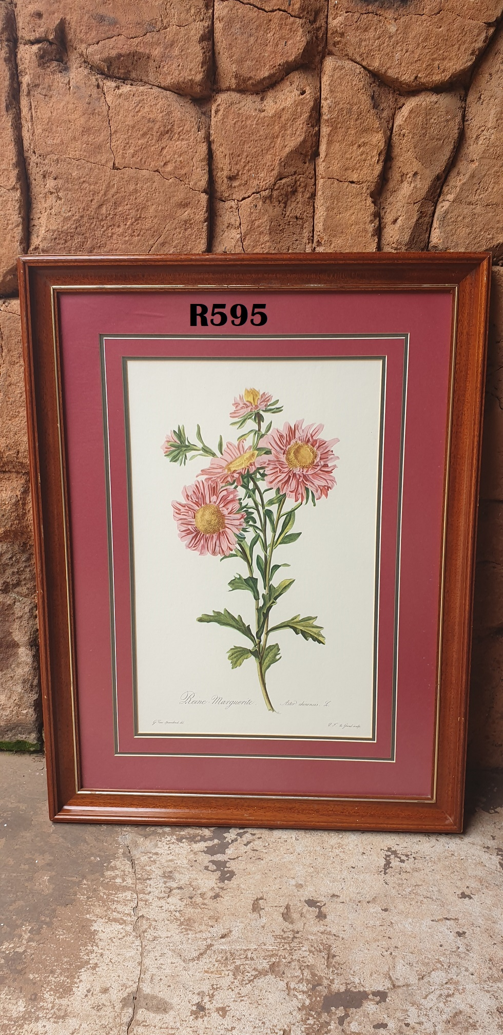 Framed Gerhard van Spaendonck Rose Print (520x685)