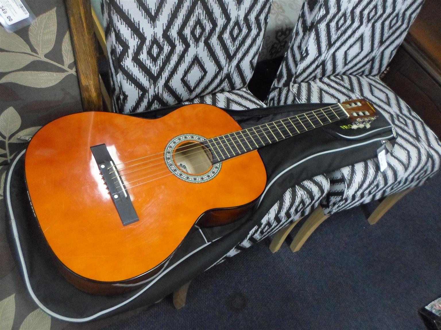 Pearl River Guitar