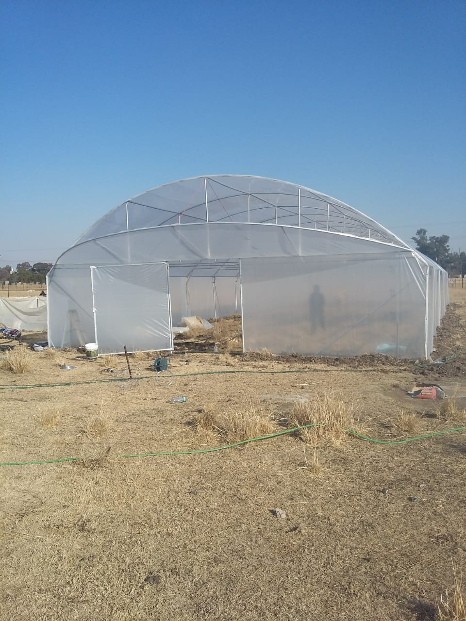 Limpopo Tunnels Green Houses