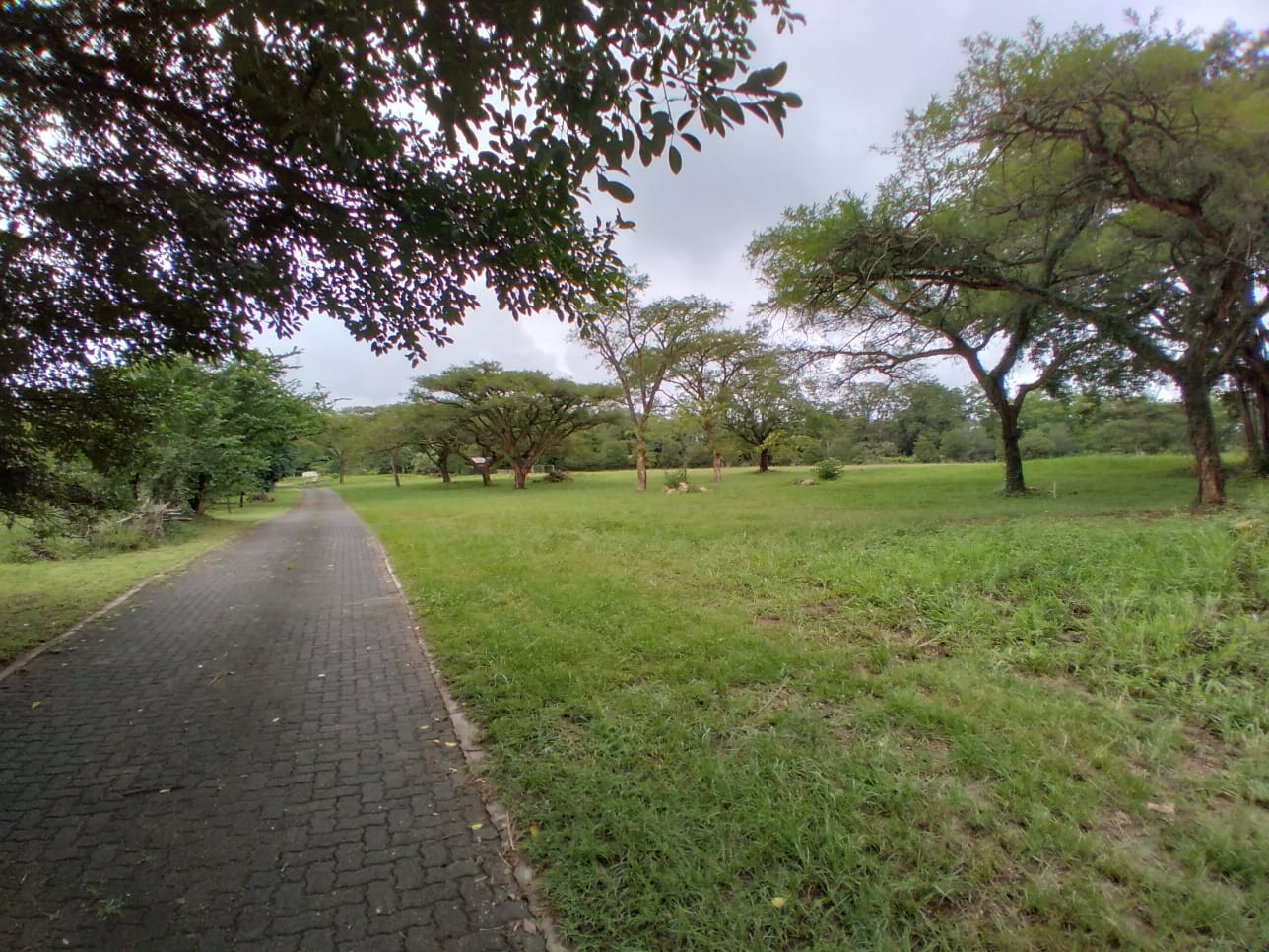 Vacant Land Residential For Sale in White River & Ext