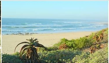 Successful business for sale Jeffreys Bay