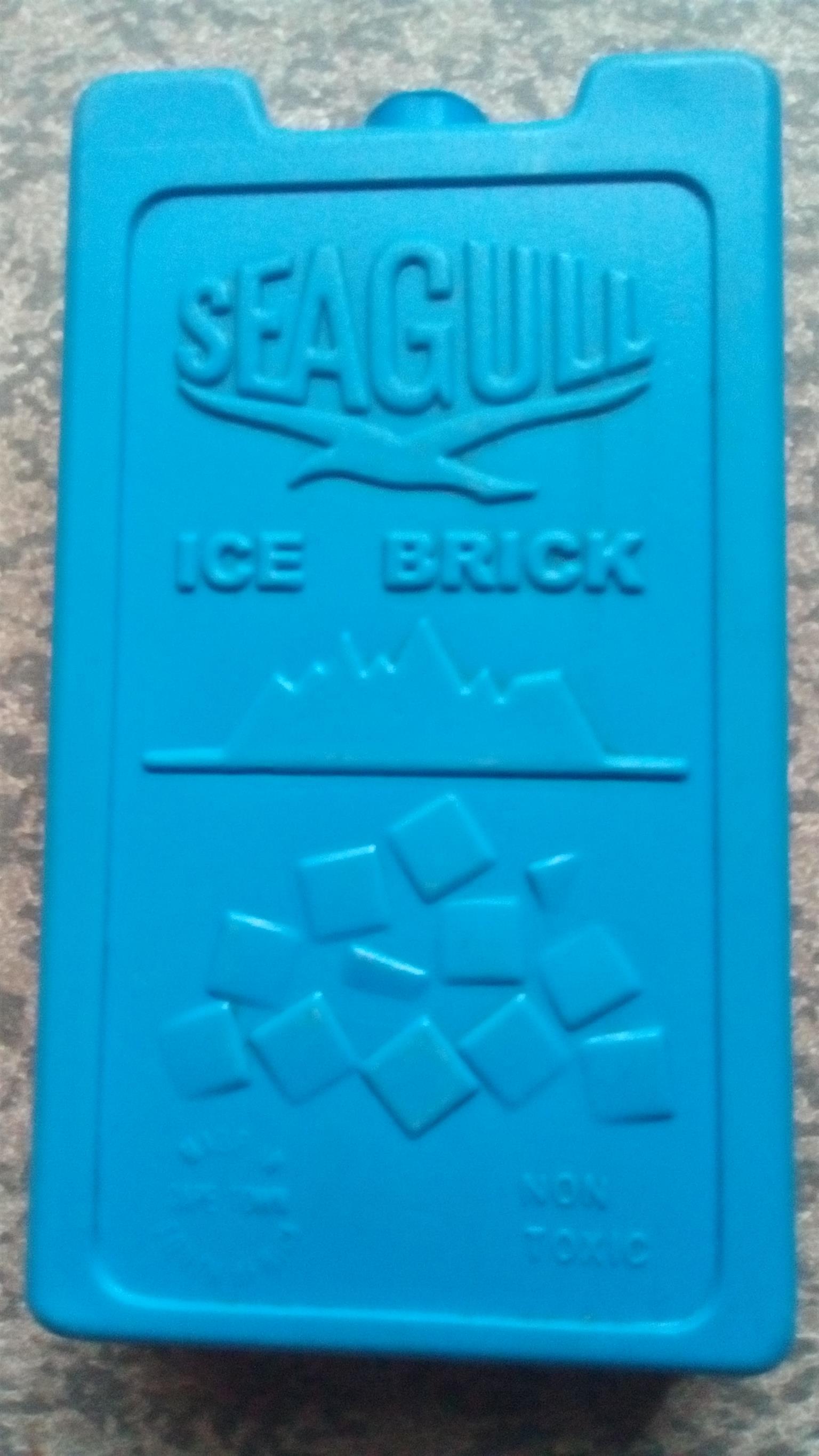 Seagull ice brick x 8