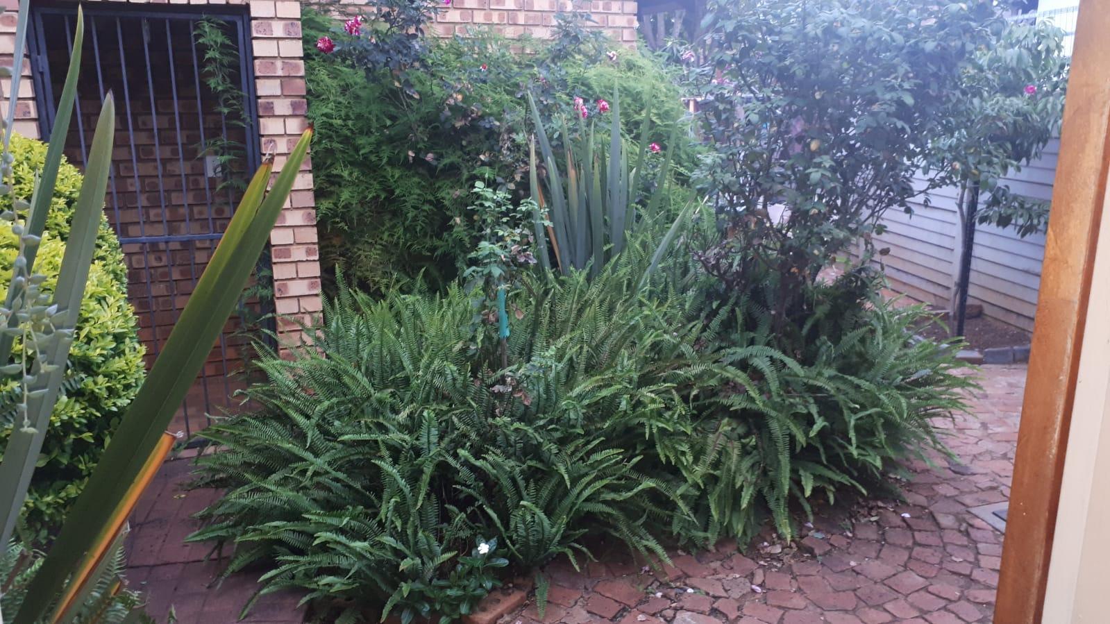Garden Flat to let Doornpoort