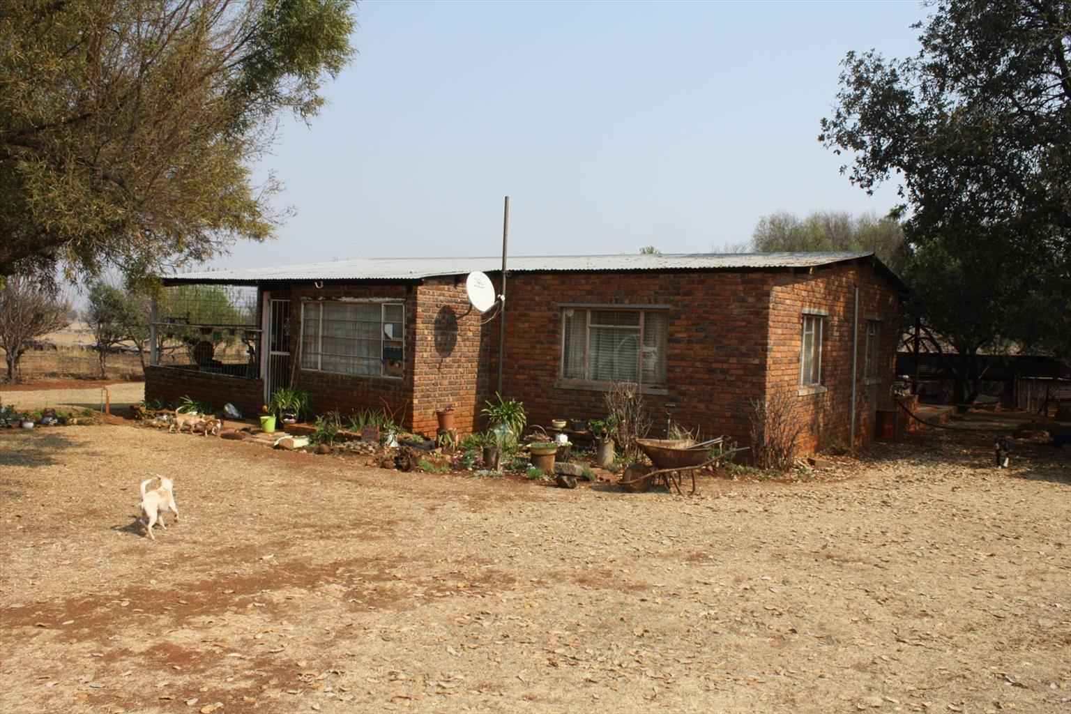 Small Holding For Sale in Laersdrif