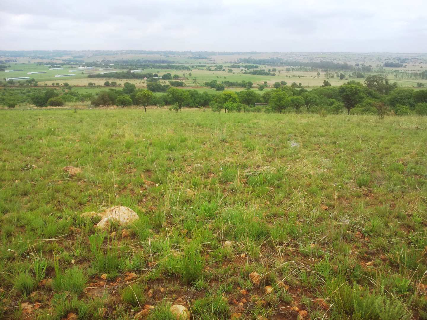 Vacant Land Agricultural For Sale in Centurion Central