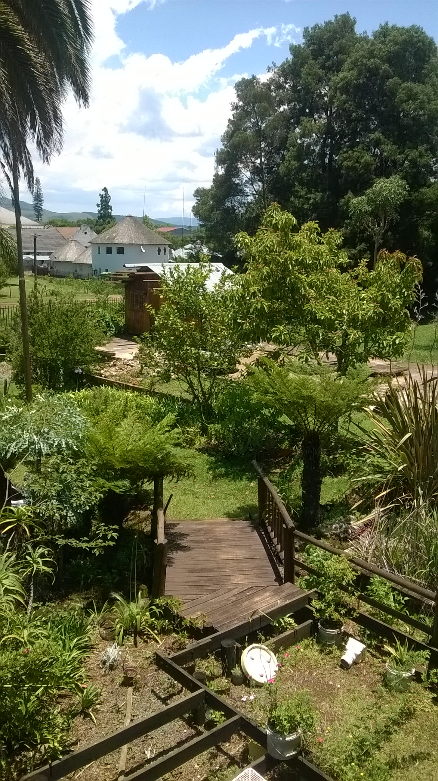 REDUCED wood house for sale in Graskop