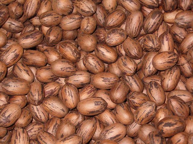 Almonds, Pecan, Cashews nuts at good prices