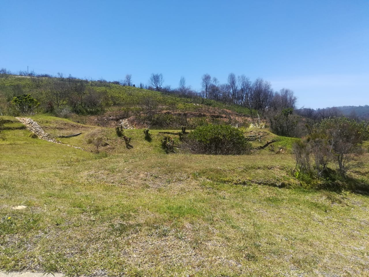 Vacant Land Residential For Sale in Estuary Heights