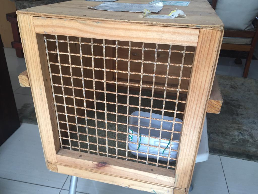 2 Medium Wooden Pet Travel boxes available - see prices and sizes below
