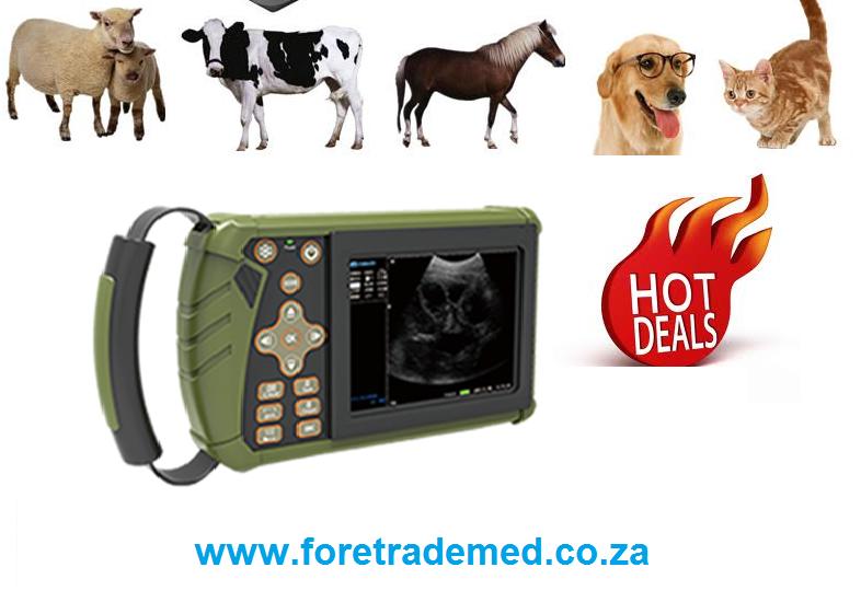Veterinary Ultrasound Scanner Machine R20 999