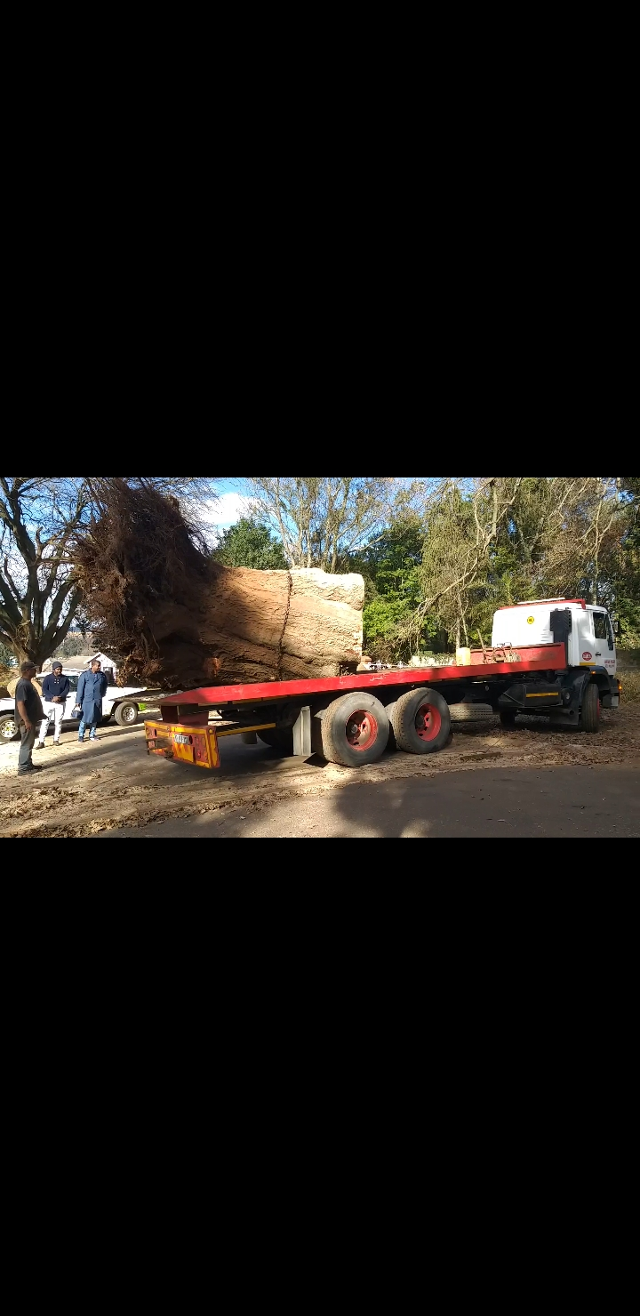 Logistics,towing,deliveries and removals