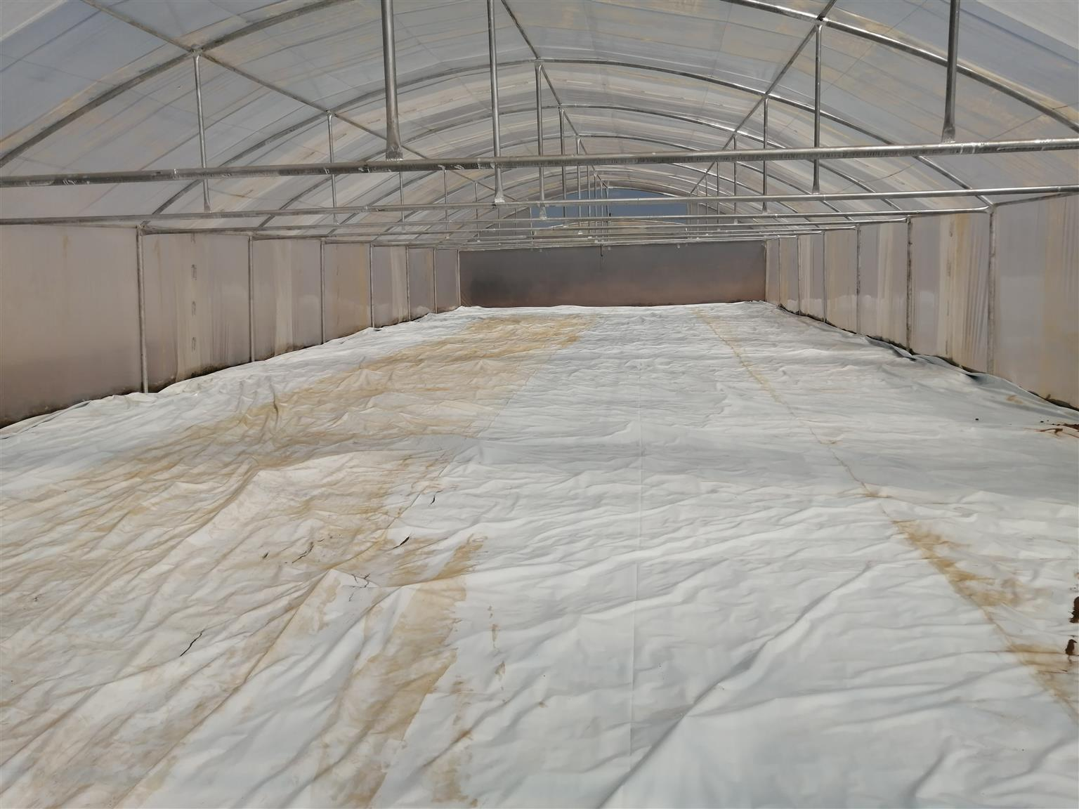 Greenhouse south africa .Tunnels for sale