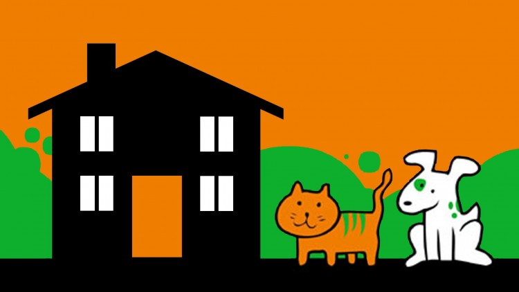 House and Pet sitter available