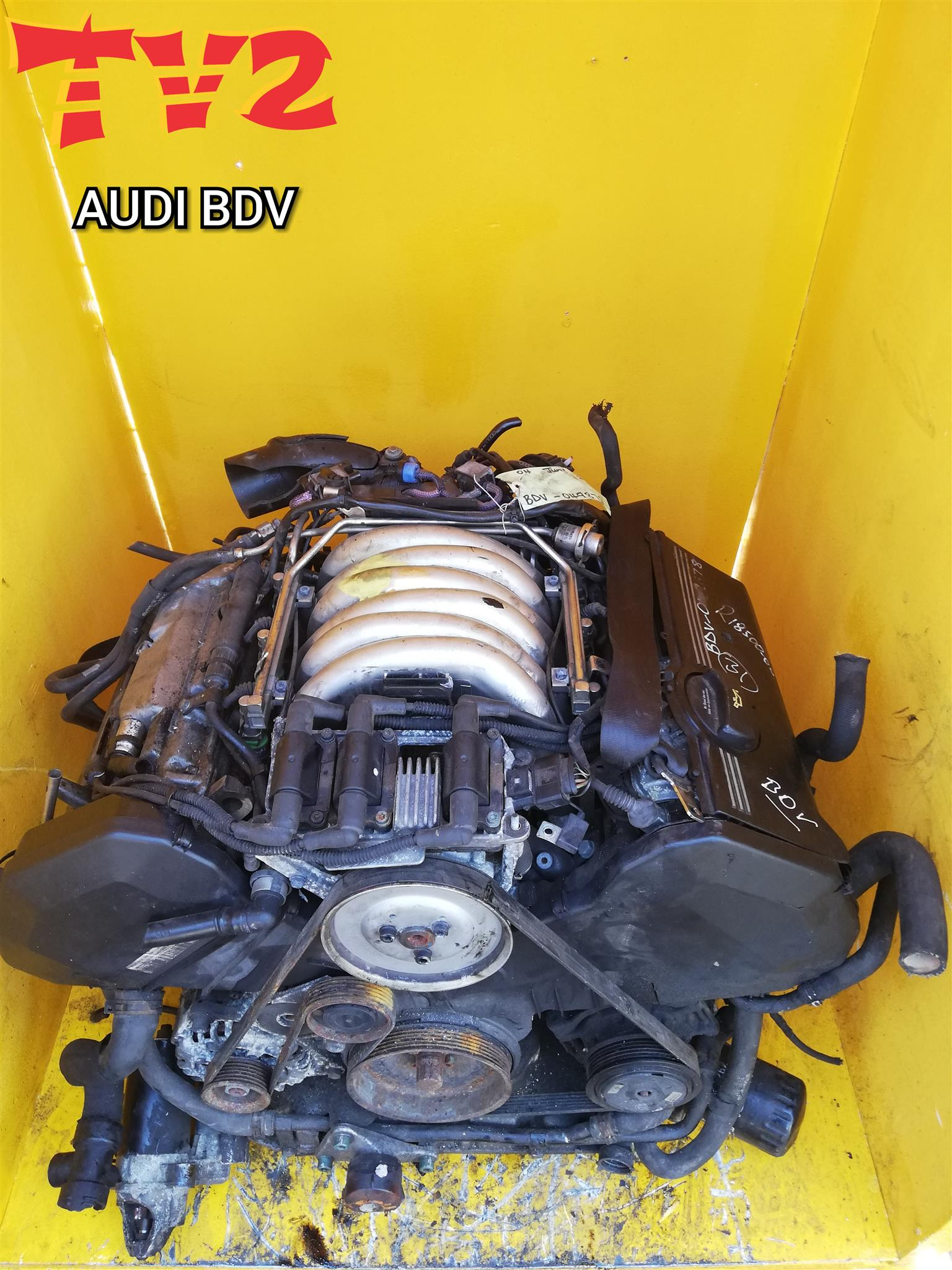 AUDI- BDV ENGINE FOR SALE