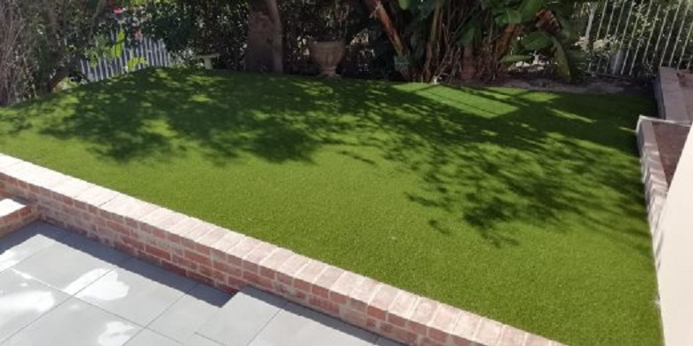 LM and kikuyu grass