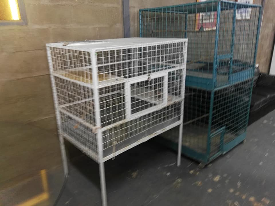 White and green bird cages for sale
