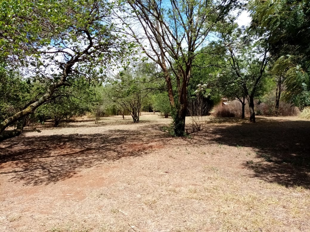 Small Holding For Sale in Rietkol Agricultural Holding