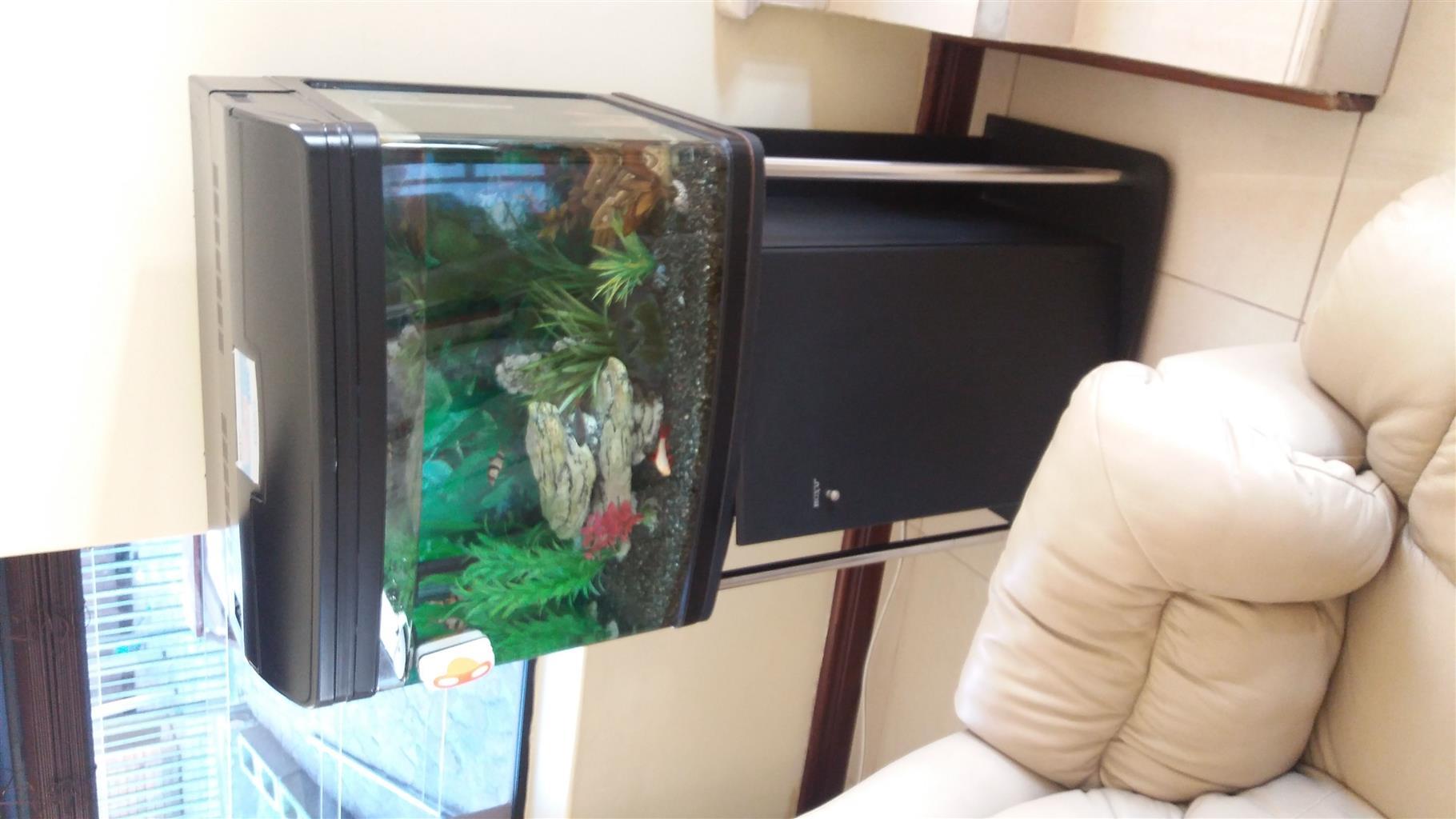 Boyu aquarium