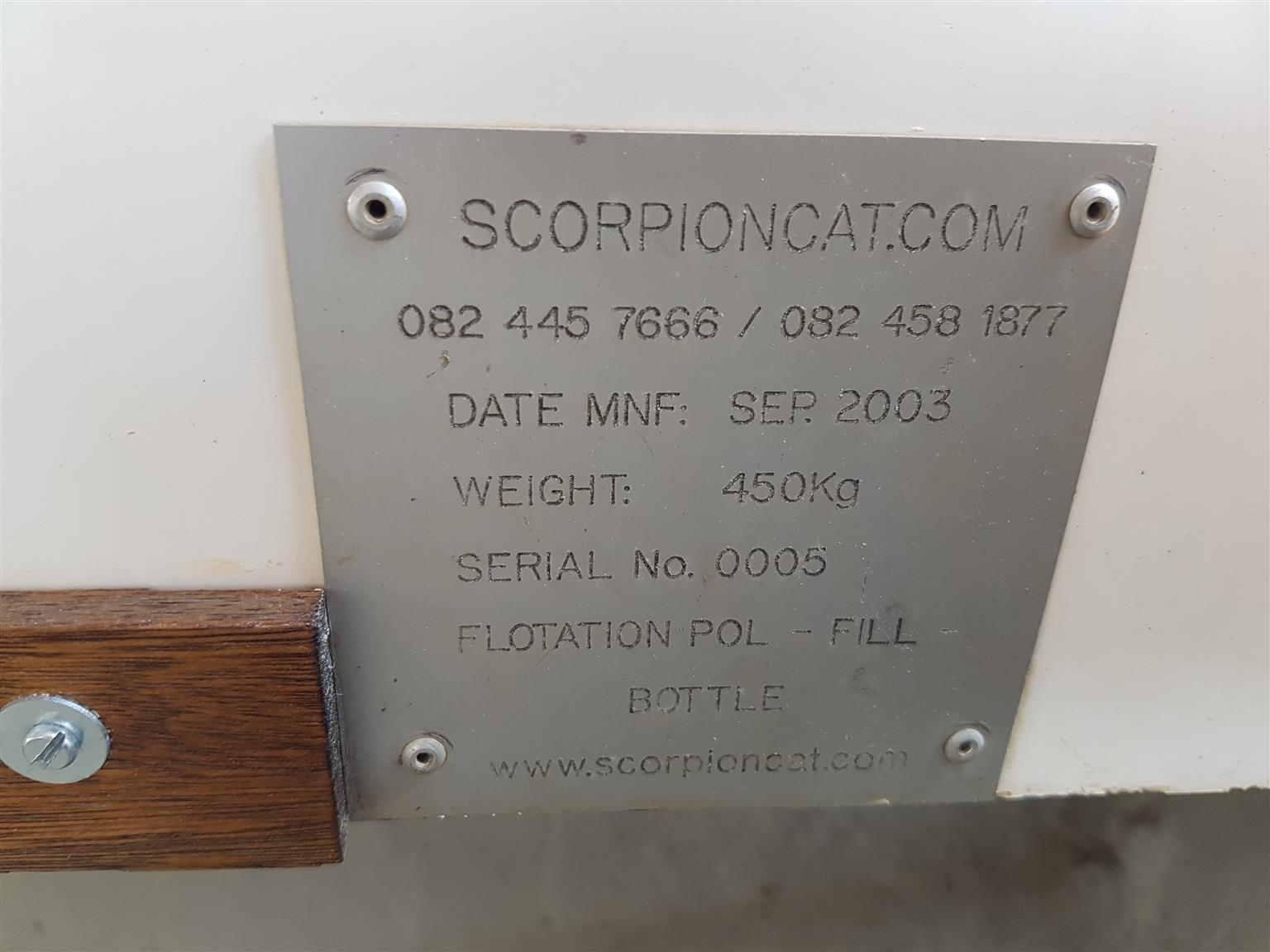 Scorpion Cat