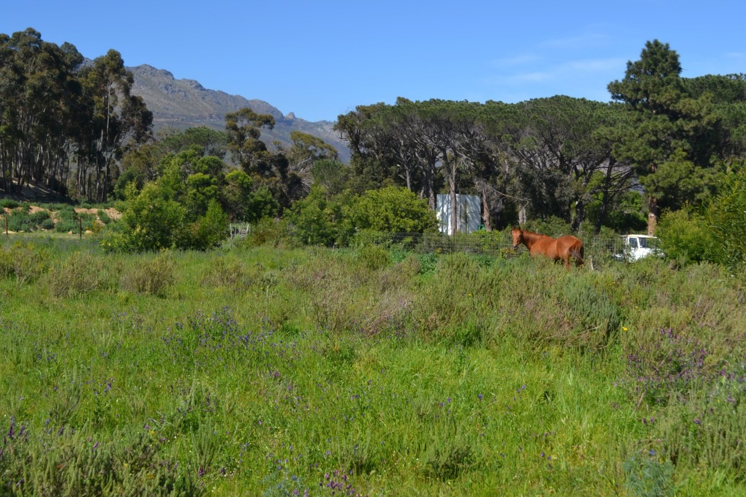 Vacant Land Residential For Sale in Tre Donne Estate
