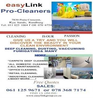 Easylink Pro-Cleaners