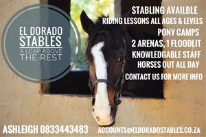 Horse Riding lessons and stabling at El Dorado Stables, Fourways