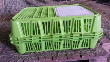 2nd hand chicken transport crates for sale