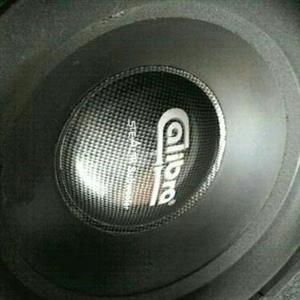 Calibra subwoofers WANTED