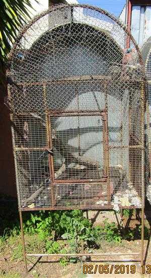 Outside Aviary / Bird Cage - ideal for Parrots