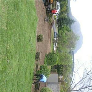 farm fresh 100% weeds free instant lawn