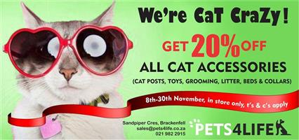 Enjoy 20% discount on all Cat toys and Accessories in-store only at PETS4LIFE BRACKENFELL