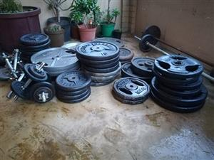 Gym Weight Plates for Sale, Best Prices!