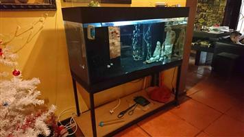 Fishtank 1.2m