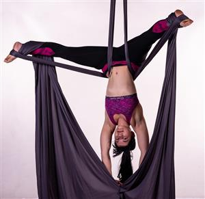 Pole Fitness; Aerial Hoops & Silks; Burlesque & Sensual and more!