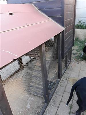 Rabbit/chicken cage