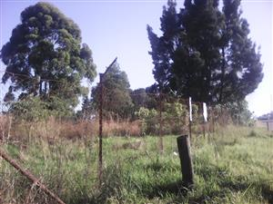 Vacant Land and land with house in Graskop