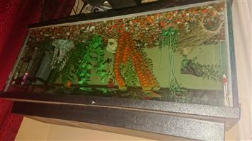Fish tank and decorations with sand