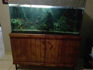 Complete fishtank
