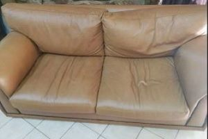 2 seater leather cough  Comfy