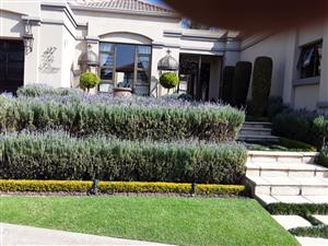 Givemore Gardening Services