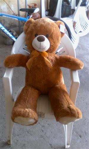 Teddy Bear for Sale