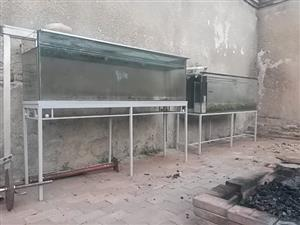 fish/reptile tanks plus stands R1000 for both