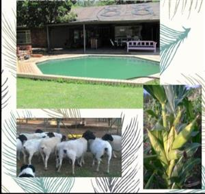 A Magnificent plot in de wagensdrift for sale