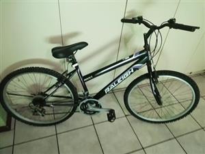 Raleigh mountain bikes (2)